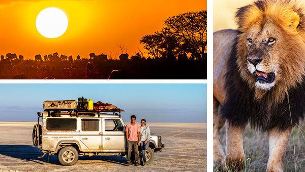 """Conheça o livro """"Viajo Logo Existo na África Selvagem"""""""